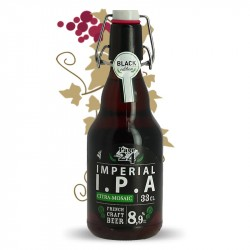 Page 24 Imperial Blond IPA Beer 33 cl French Craft Beer