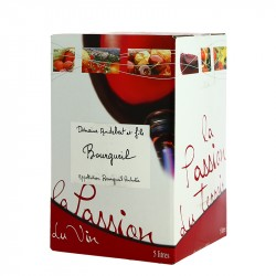 Wine box 5 Liters Bourgueil by Domaine Audebert