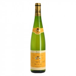 Muscat dry fruitty White Aromatic Alsace Wine Gustave Lorentz