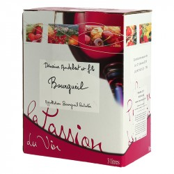 Boxed wine 3 Liters Bourgueil by Domaine Audebert