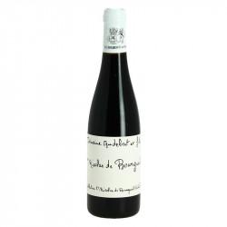 Saint Nicolas de Bourgueil AUDEBERT Semi Bottle