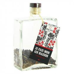 Je Fais Mon Gin Maison Gin Strawberry by Quai Sud