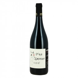 Le PETIT SPENCER Red Corbières Wine by Château La PUJADE
