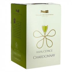 BIB CHARDONNAY CHARTREUX 5 L