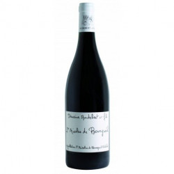 Saint Nicolas de Bourgueil by Domaine Audebert Red Loire Valley Wine