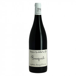 Bourgueill by Domaine Audebert Red Loire Wine