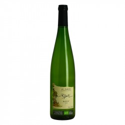 Muscat Dry White Organic Wine by Philippe HEITZ