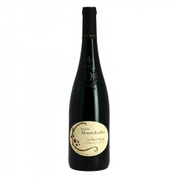 Les Neuf Vingt the Maturity of the Passion Red Anjou Wine from Domaine Musset Roullier 75 cl