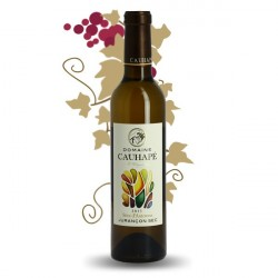 SEVE d'AUTOMNE Dry White JURANCON Wine by Domaine CAUHAPE Half Bottle