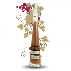 FINE CHOCOLATE Cream Liqueur Miniature Bottle 4 cl by FISSELIER