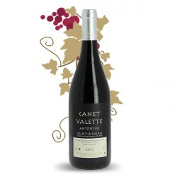 ANTONYMES Saint Chinian Red Wine by Domaine CANET VALETTE